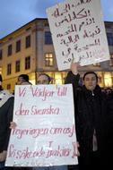 Irakier demonstrerade utanför slottet i mars och krävde bättre villkor för asylsökande irakier. Foto: Tobias Lundgren/SCANPIX