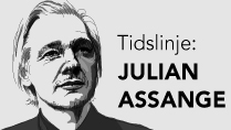 Julian Assange. Grafik: Liv Widell