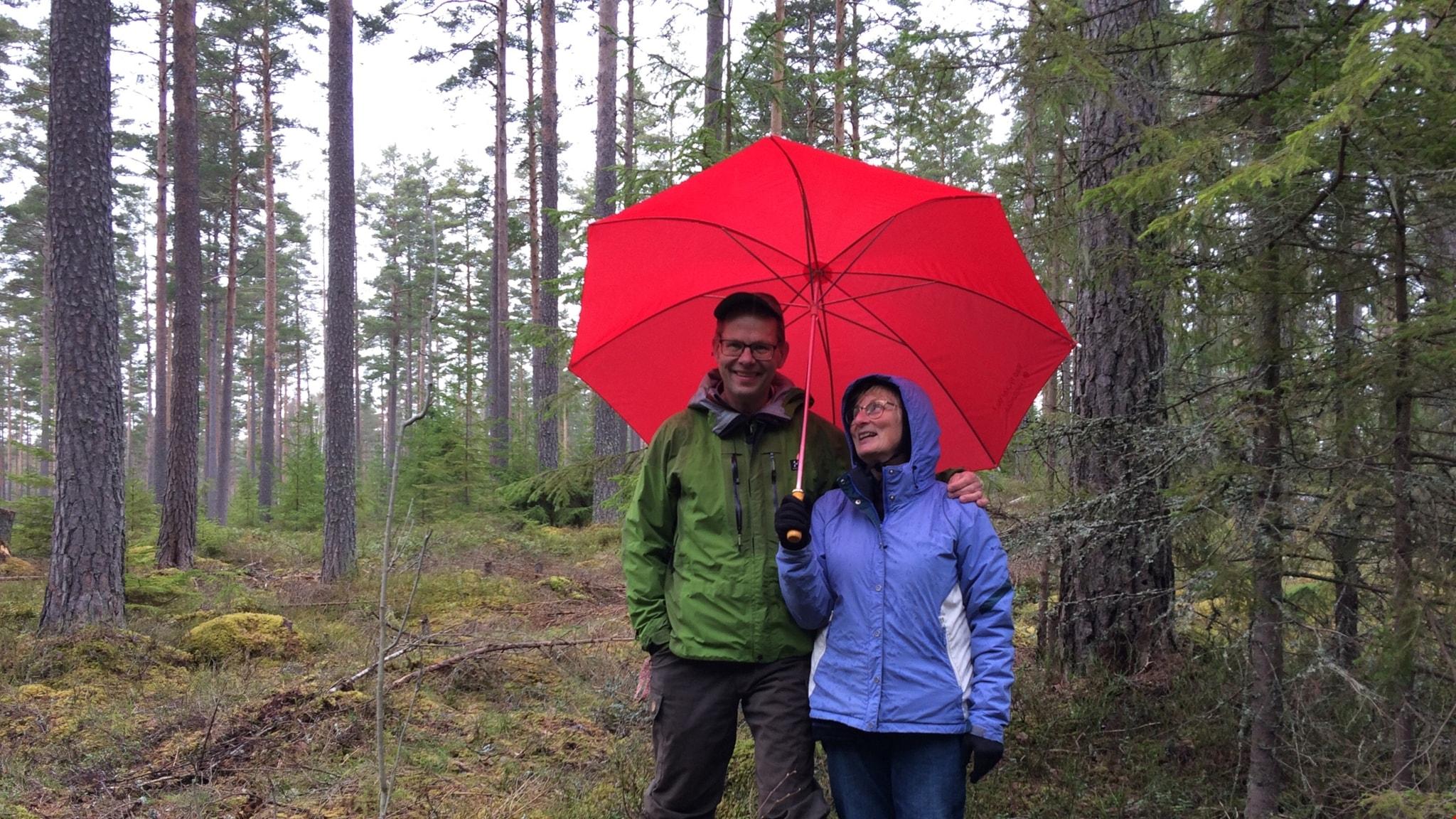 Skog utan hyggen och livet i Indalsälvens delta