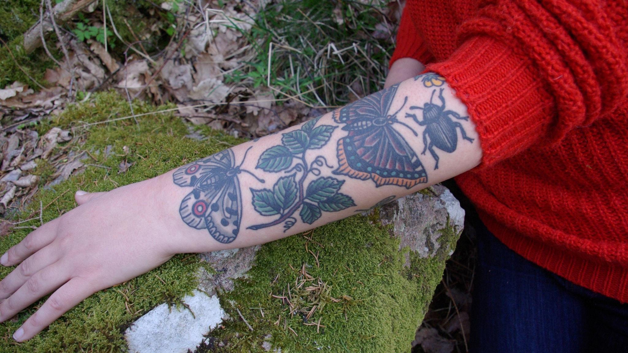 Ringmärkta fåglar och tatuerade människor