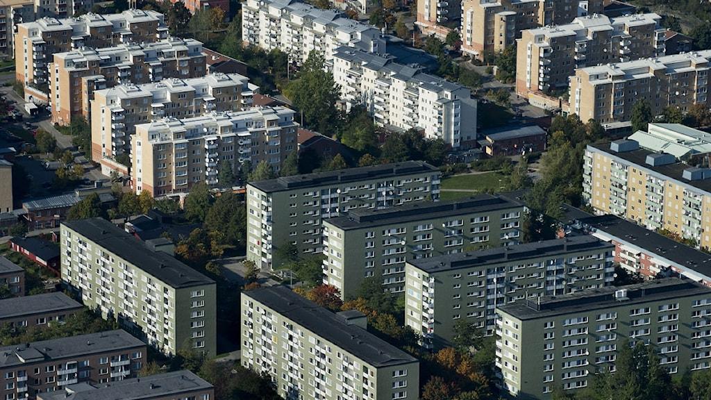 En osannolik plats för en åtråvärd tävling – helgens Submit i Rinkeby