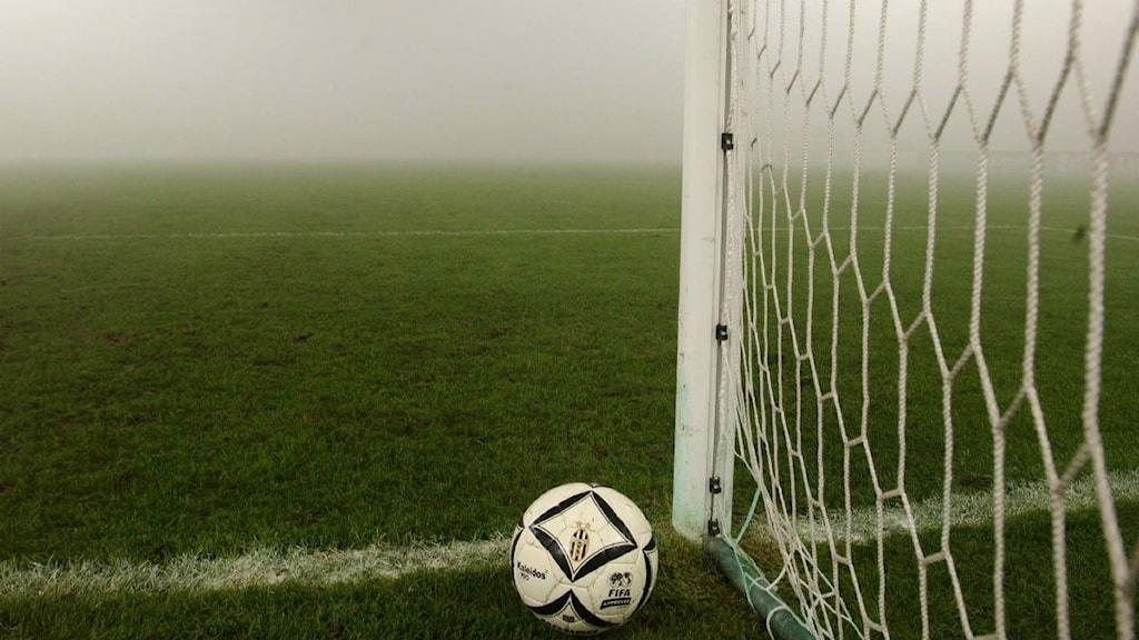 Fotbollsplaner blir upplysta. Foto: Alberto Ramella TT