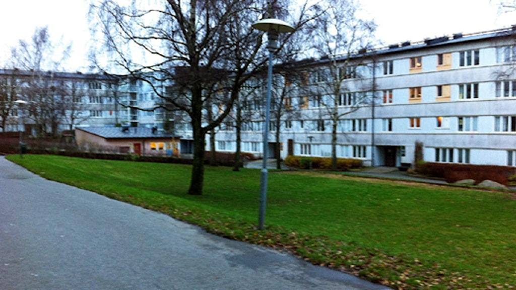 Pennygången. Foto: Louise Jacobson/Sveriges Radio