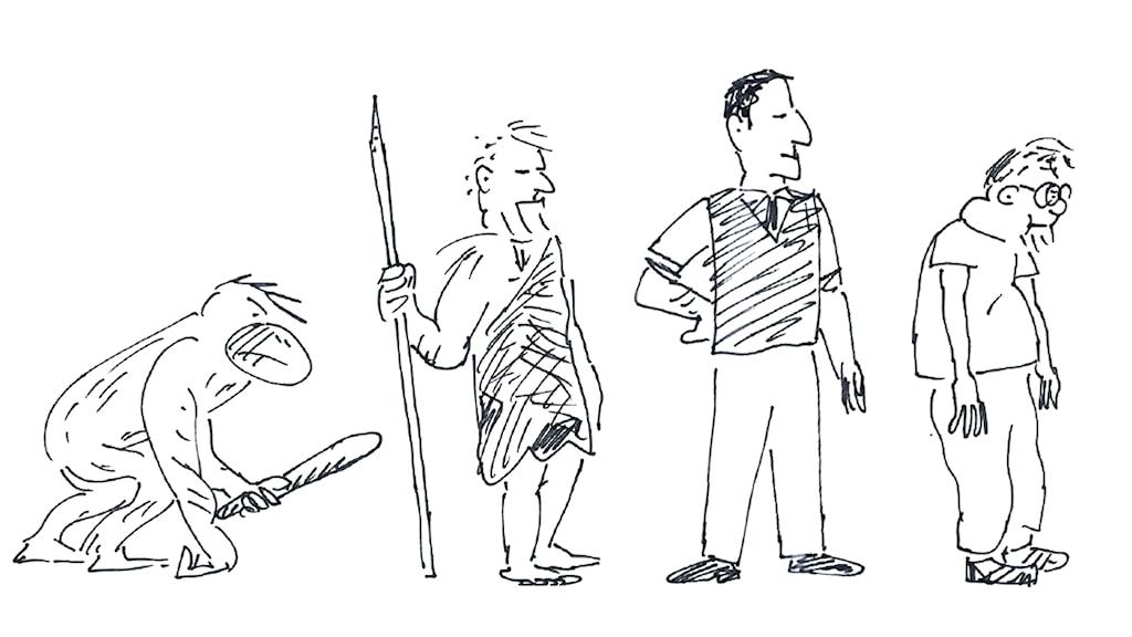 Från grottmänniska till paddnacke. Illustration: Peter Öberg/Sveriges Radio