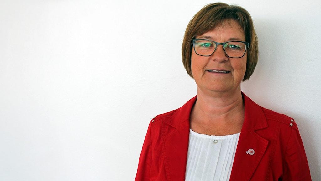 Elisabet Strömqvist, Socialdemokrat