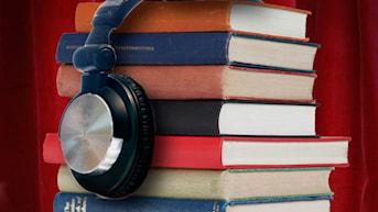 Kända skådespelare läser upp allsköns intressanta böcker som man kan lyssna på när man själv inte har tid att läsa. Radioföljetongen är för dig som visste eller inte visste att du var intresserad av att höra just den boken.