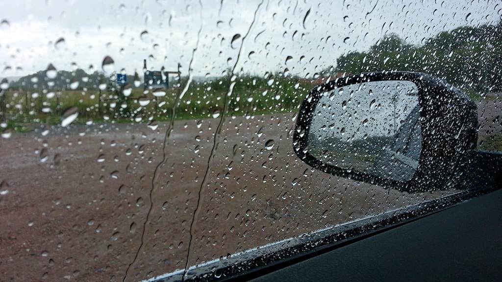 Regnet bara öser ned / Foto: Michael Gawell / Sveriges Radio