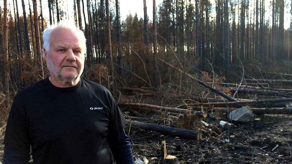 Skogsägaren Lars Stolpe / Foto: Andreas Irebring / SR
