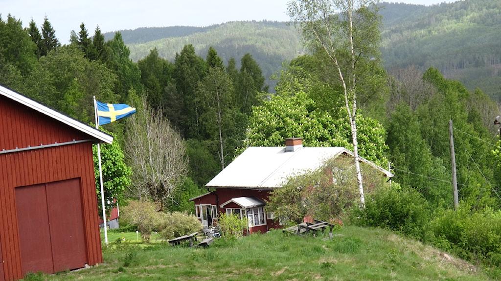 En stuga, flagga och en ladugård i Dalsland. Foto: Charlotte Andersson/P4 Väst.