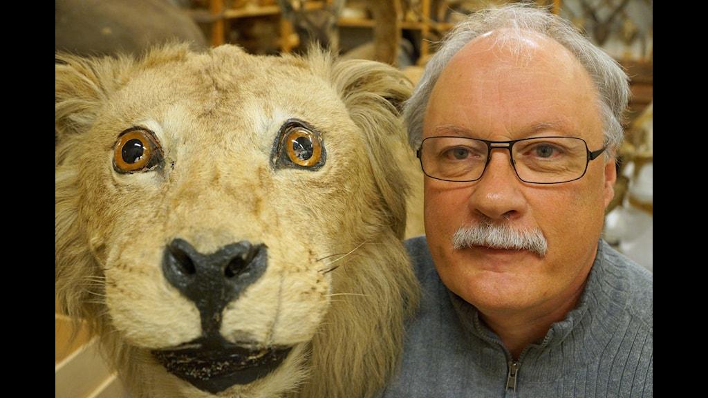 mötesplatsen.se svensk  lejon