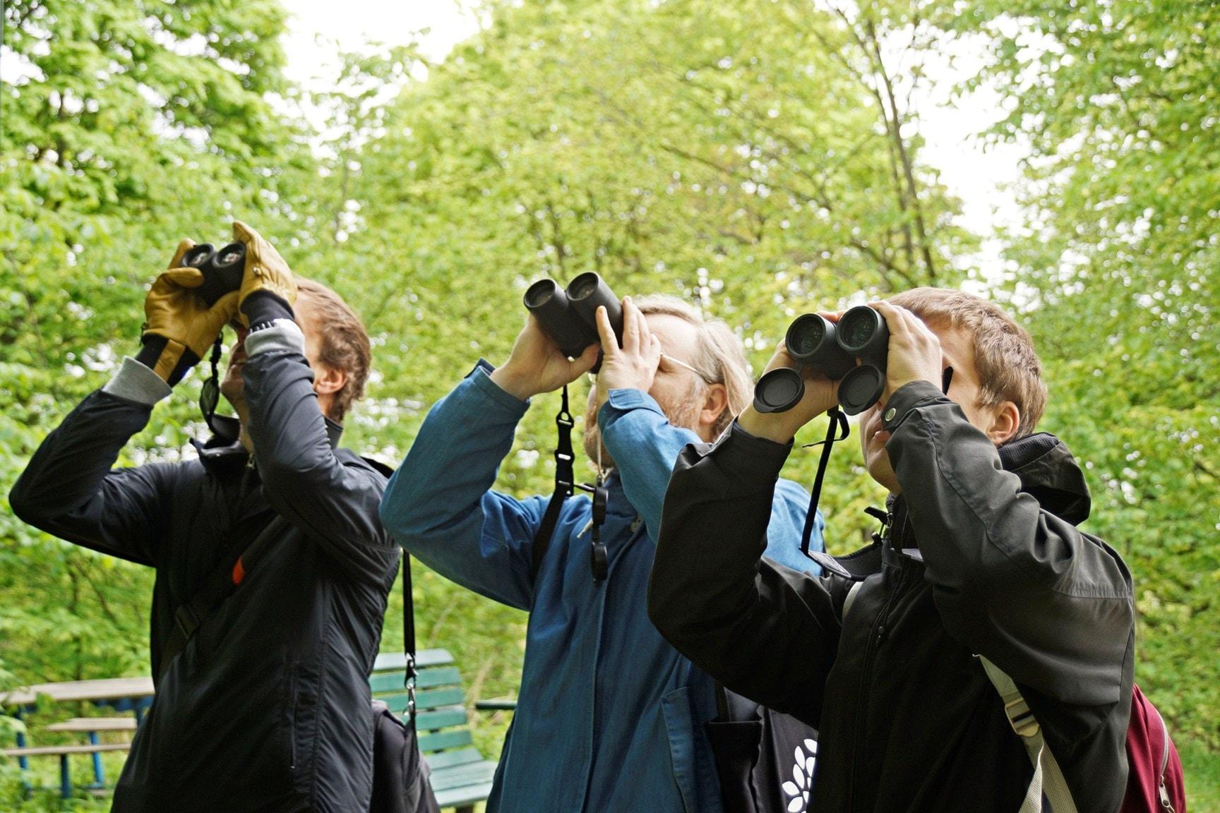 På spaning efter fågelskådare