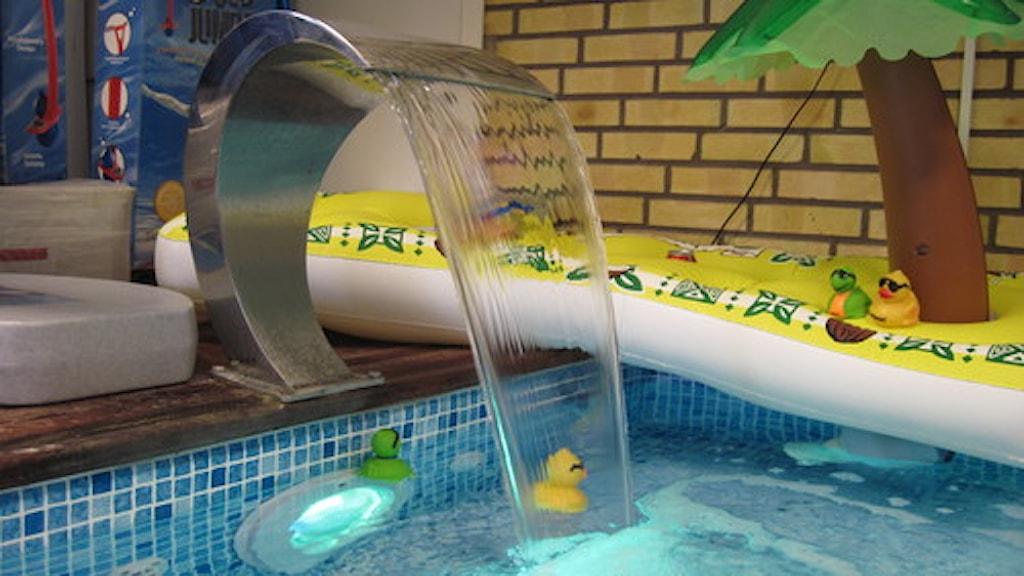 Bajs i poolen inte farligt i vanliga fall