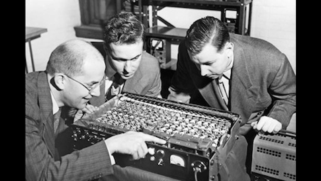 En så kallad elektronisk hjärna studeras noga av några amerikanska forskare 1950. Foto: SVT Bild.