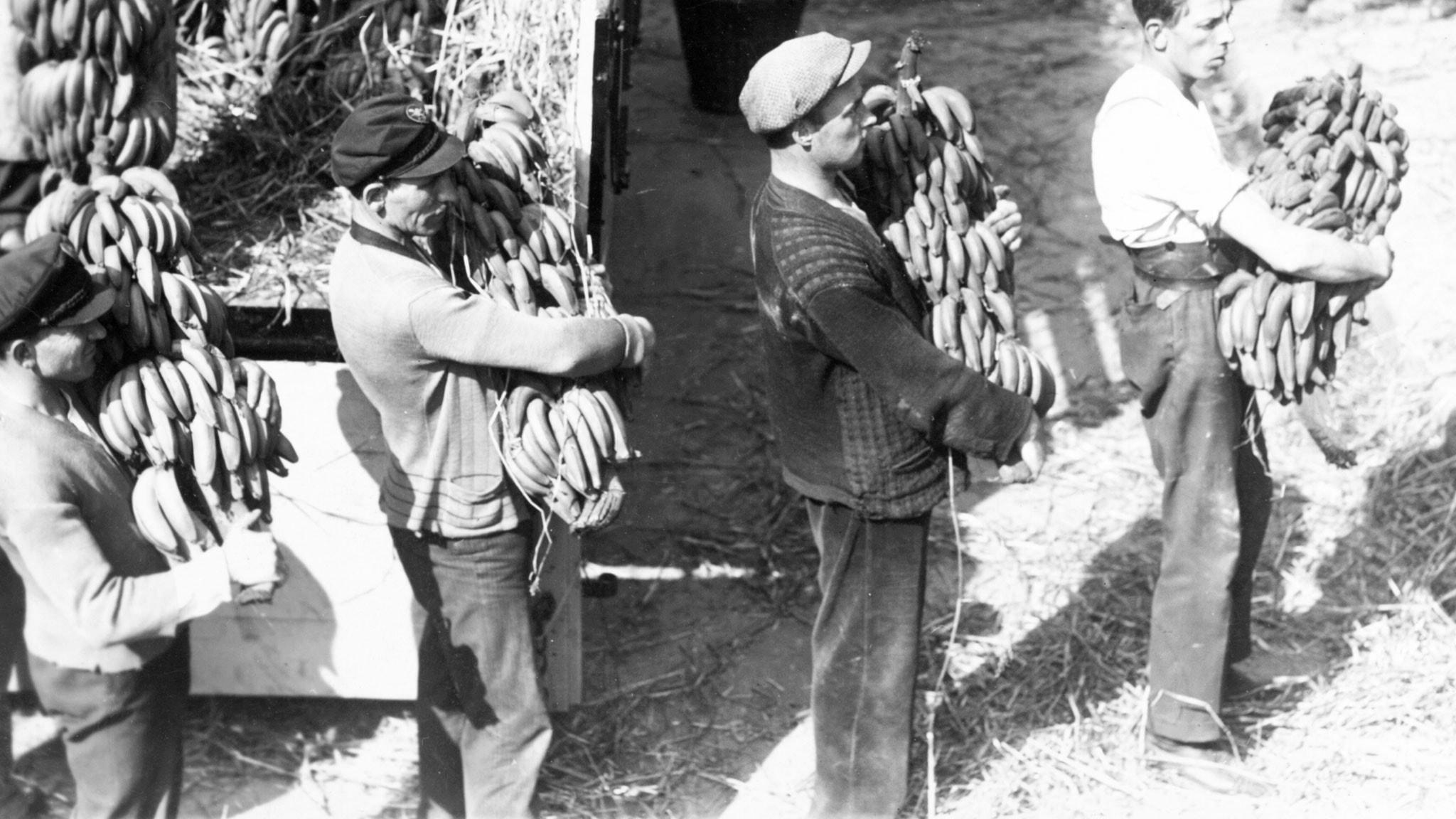 Bananerna har kommit 1944