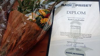 P4 Dalarna Årets Lokalradio 2014