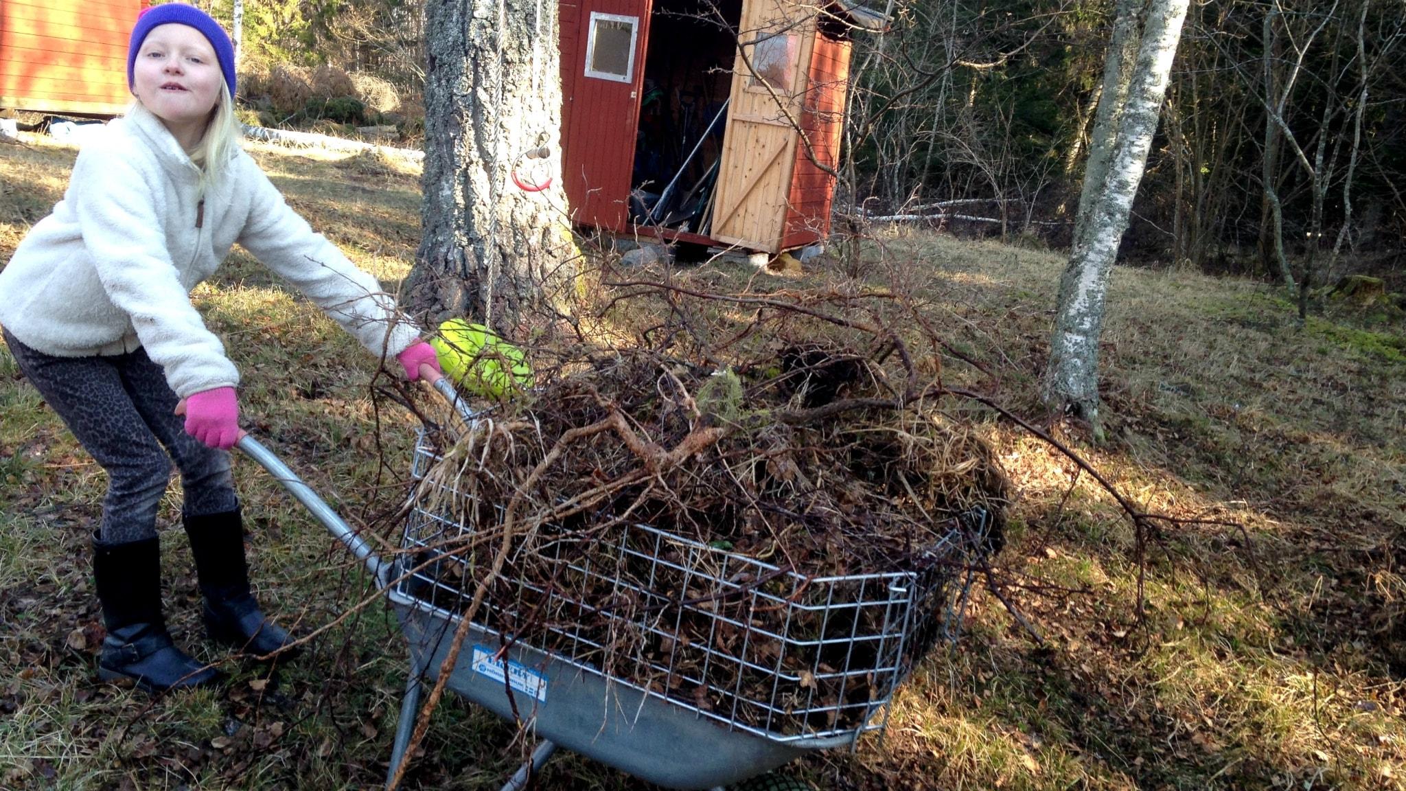 Modern och omodern kompostering