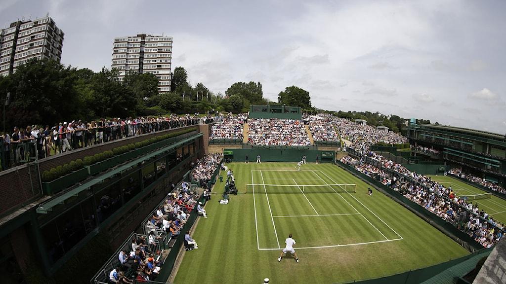 Wimbledon tennis stadion