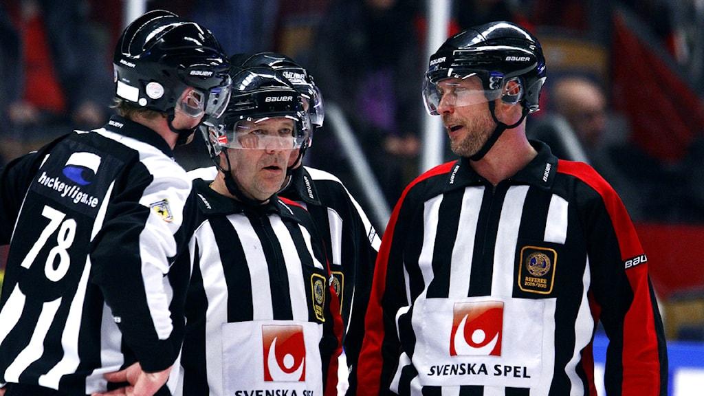 2012 Hockeydomare