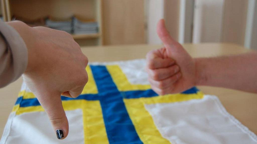 Peukut ylös tai alas? Kuvassa näkyy Andreas Jonassonin suunnittelema lippu. Foto: Annika Lantto/Sveriges Radio