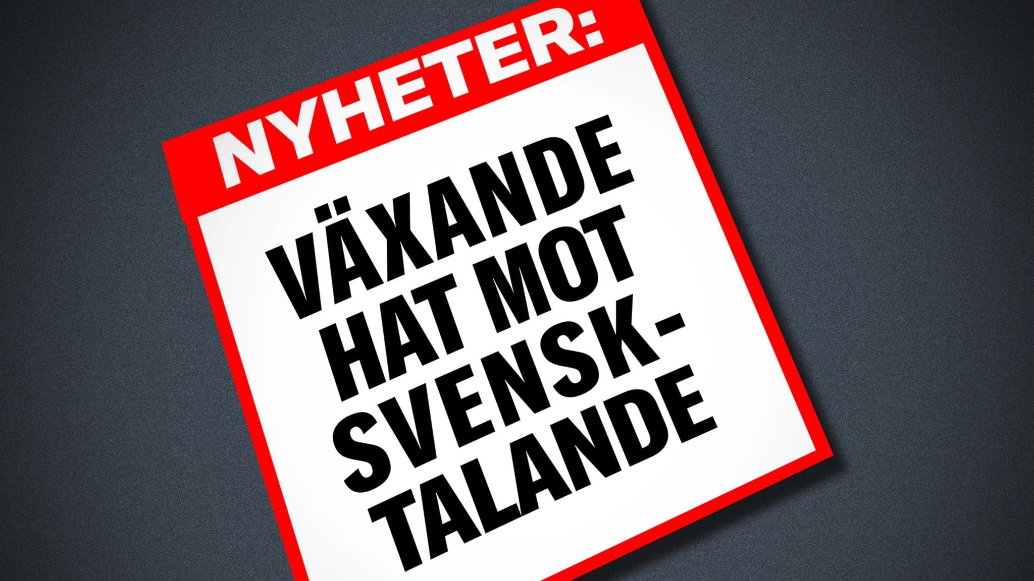 Finlandssvensk professor i journalistik: Inget regelrätt hot mot svenskspråkiga - Sisuradio