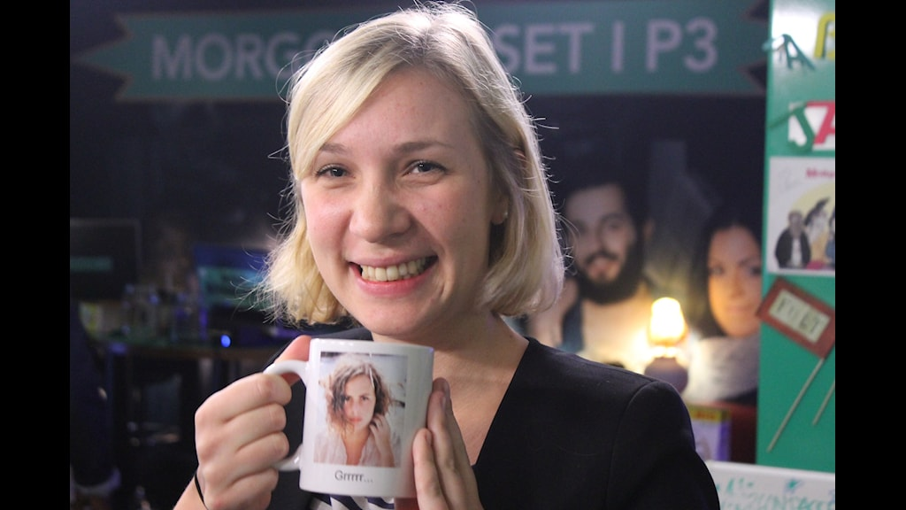 Karin Leijon statsvetare