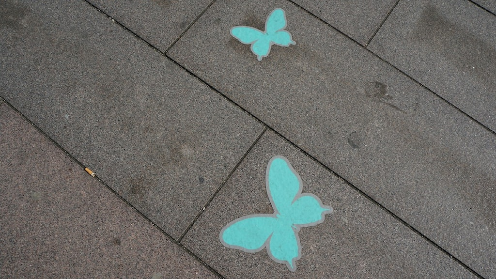 Butterflies on the pavement lead the way to the Euroactivities. Photo: Kris Boswell/Sveriges Radio
