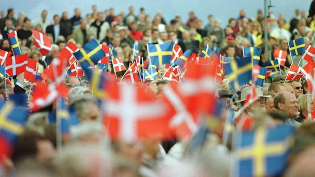 Danmark flaggor