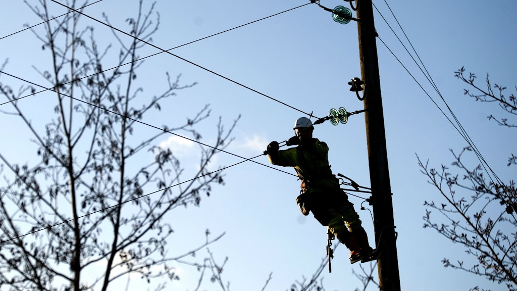 A utility worker fixes a power line south of Gothenburg. Photo: Adam Ihse / TT.