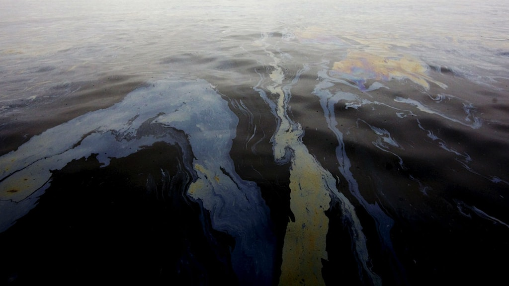 Oil spill. Photo: Cornelius Poppe/TT