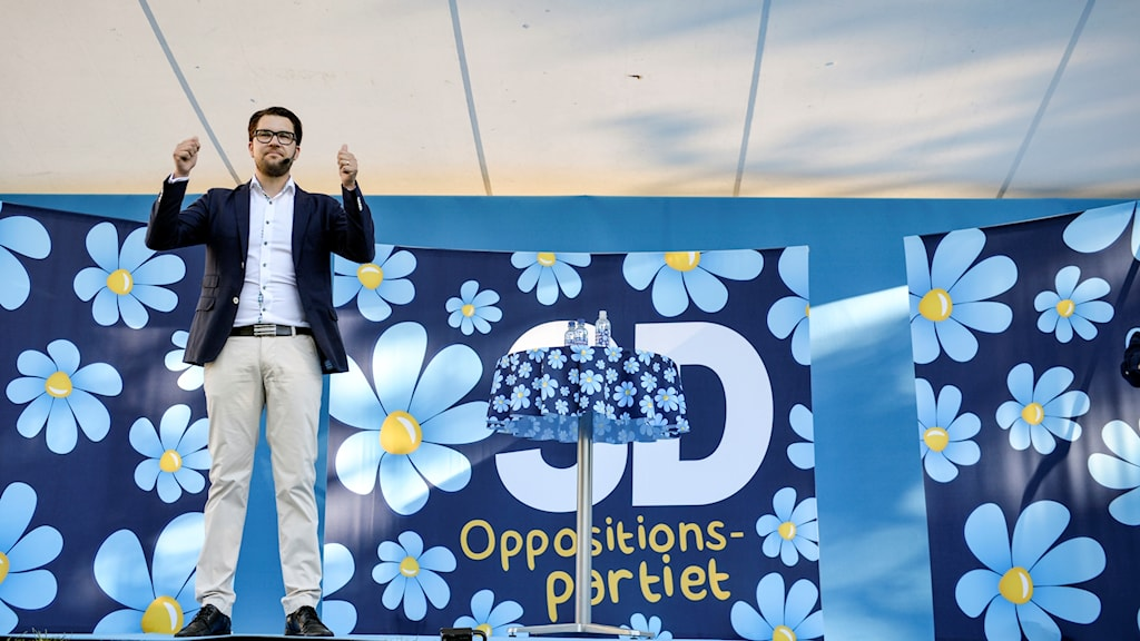 Jimmie Åkesson speaking at Almedalen Week last year. Photo: Henrik Montgomery/TT