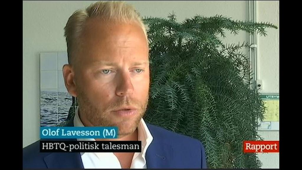 Olof Lavesson (m) i Rapport 2014-07-21 (Foto: SVT)