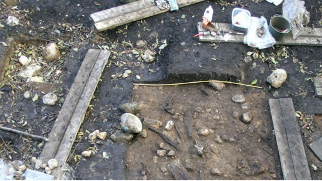 Skelett aus Steinzeit Schweden Genforschung Deutschland Tübing