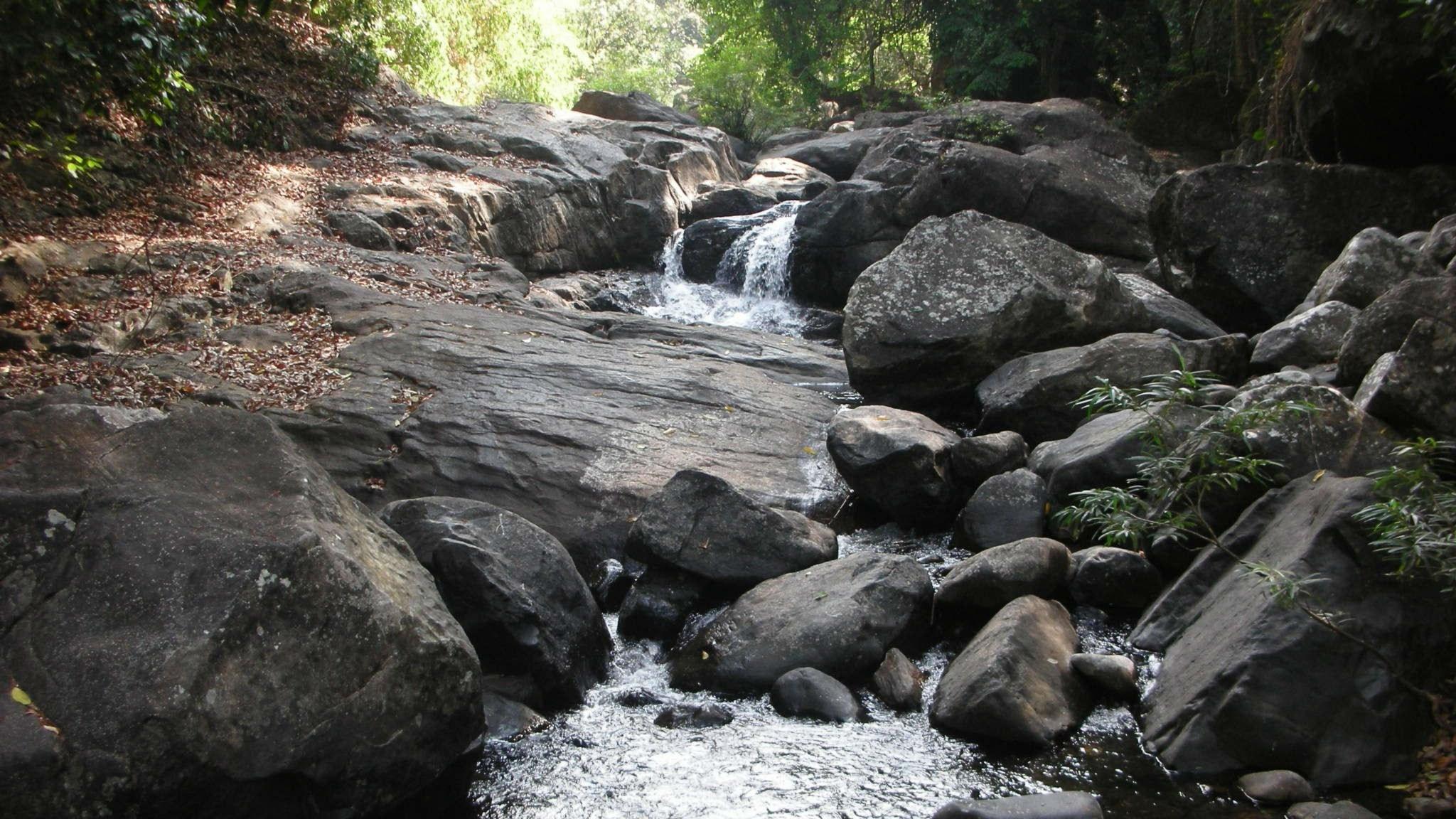 Vid fjällbäckens vatten