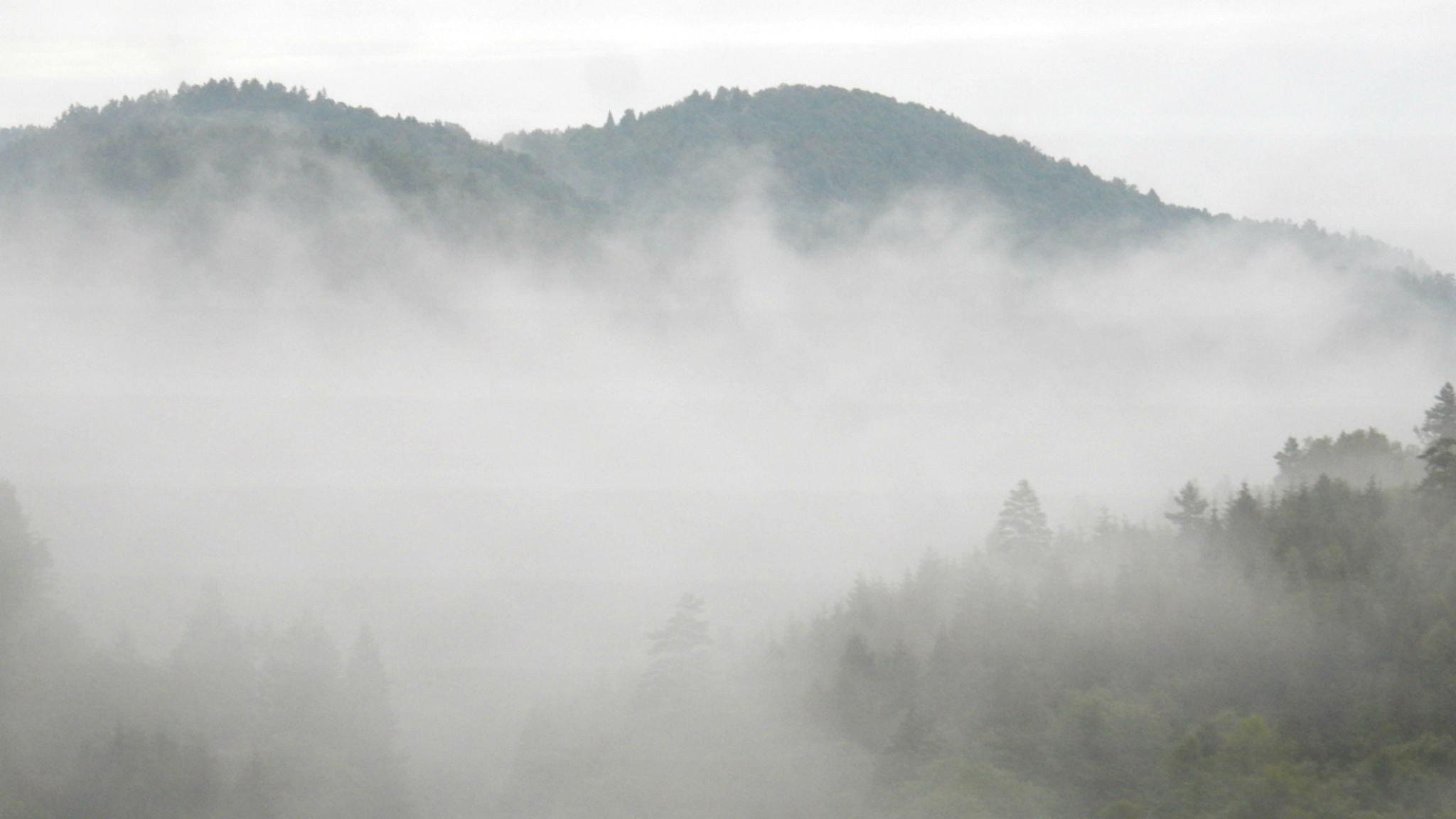 I dimman, de viktigaste orden och stillhet