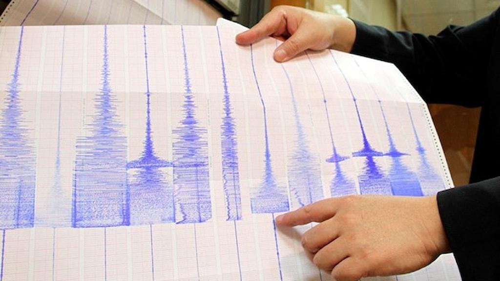ثبت وقوع زمین لرزه درمرسسه ی زلزله نگاری Foto: AP/TT