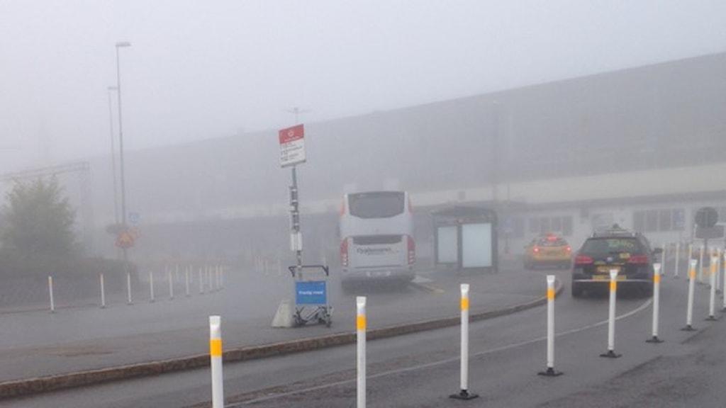 الضباب الكثيف أعاق حركة النقل الجوي. صورة: لويسي هاغ/ إذاعة السويد.