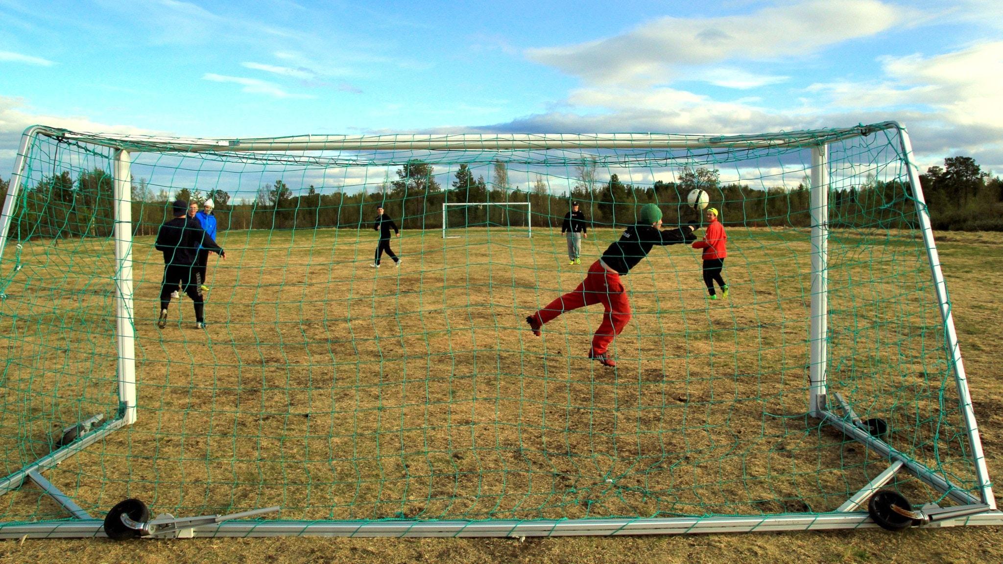 Motströms  i Tornedalen: Kuttainen – fåraherdarnas by - spela
