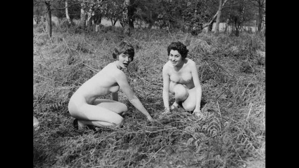 frågor om sex nakna äldre damer