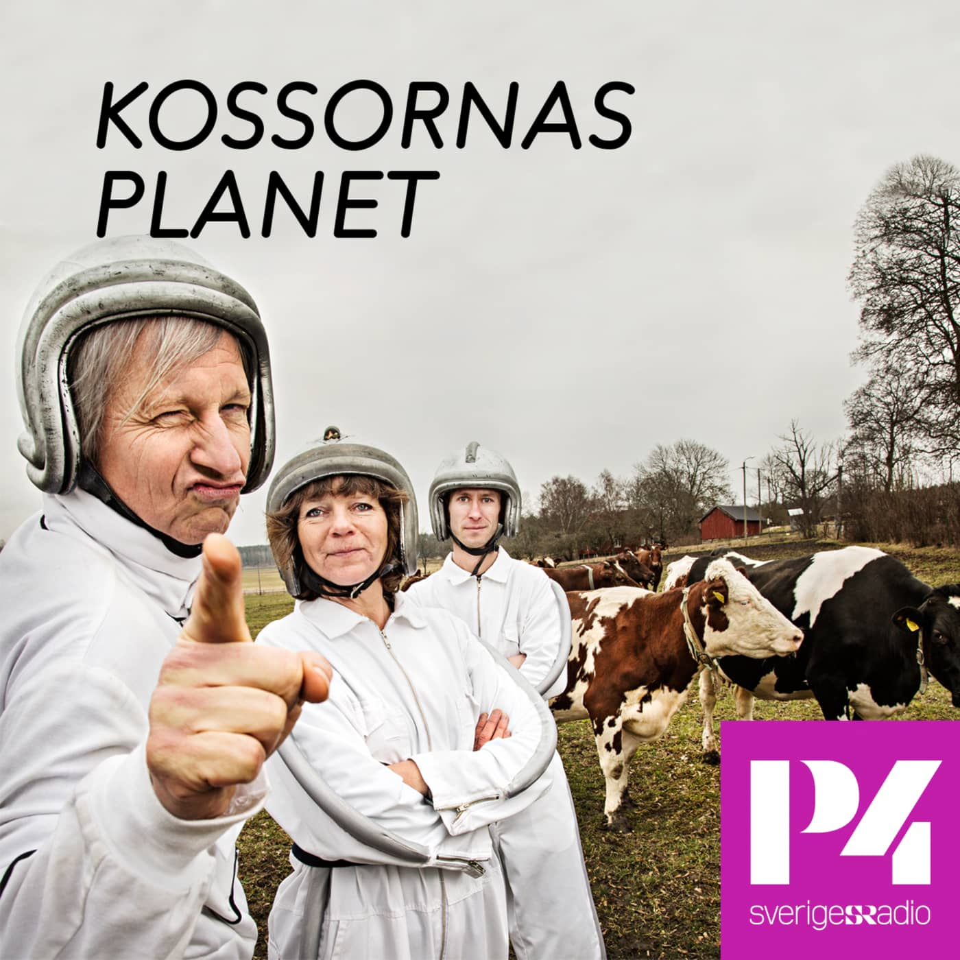 Kossornas planet i P4