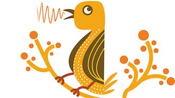 Pausfågeln. Lyssna på fåglar och samtal kring dem.