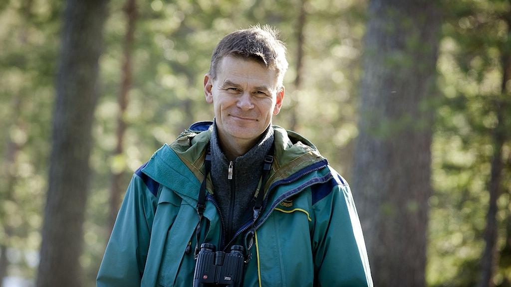 Sveaskogs skogschef Herman Sundqvist Foto: Sveaskog