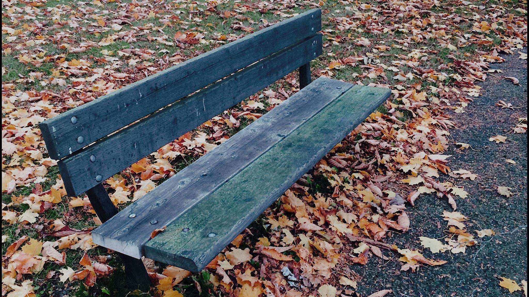Den livsfarliga ensamheten