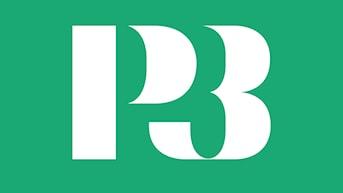 P3 är ung public service.  Samhällsjournalistik, populärkultur, humor och relationer är bärande delar. P3 guidar till den nya musiken och lyfter fram nya svenska artister.