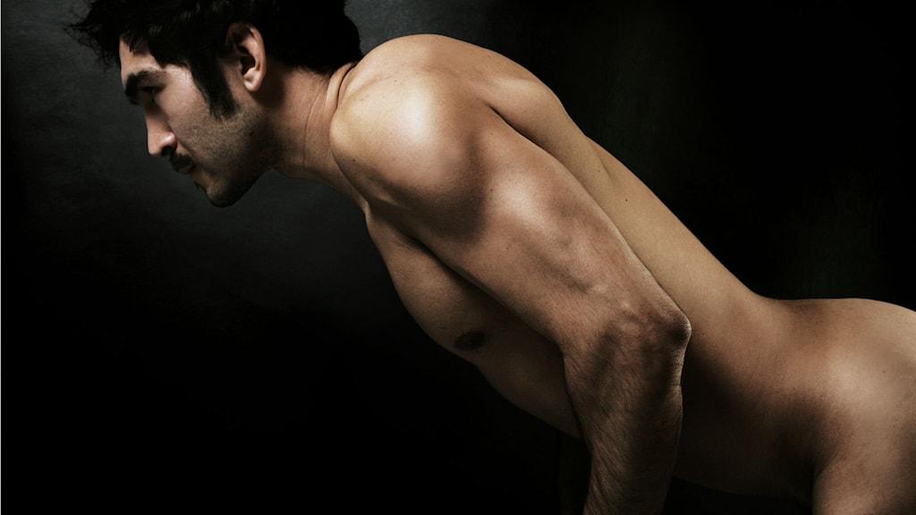massera prostatan