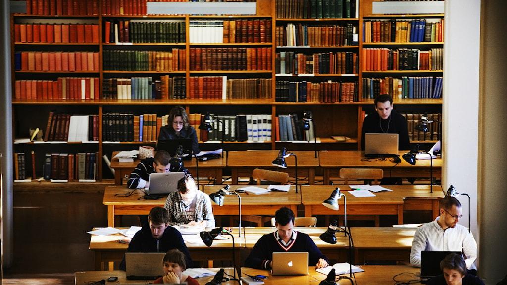 Flera studenter sitter i en studiesal och läser. Foto: Tor Johnsson / SvD / SCANPIX.
