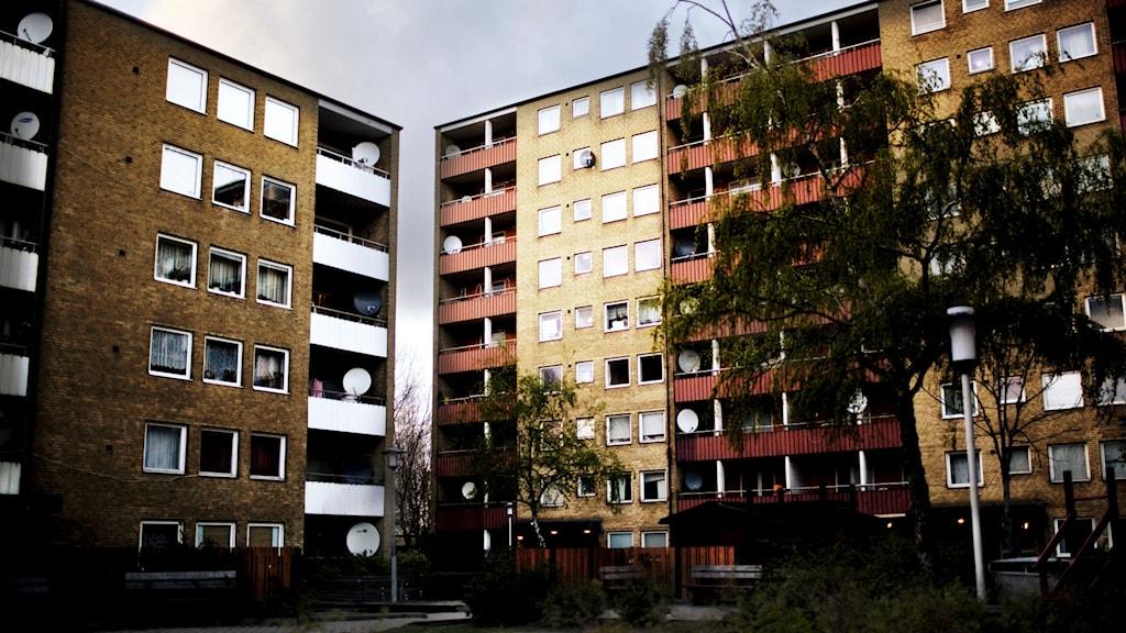 Stadsdelen Rosengård i Malmö. Foto: Simon Paulin /SvD/TT