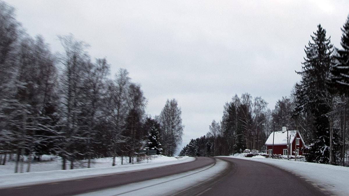 Kent special - 500 mil i snön