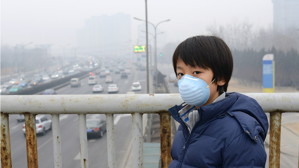 Sju miljoner människor dör årligen av sjukdomar som kan kopplas till luftföroreningar. Dessutom förvärrar dessa gaser den globala uppvärmningen. Foto: UNEP Shutterstock