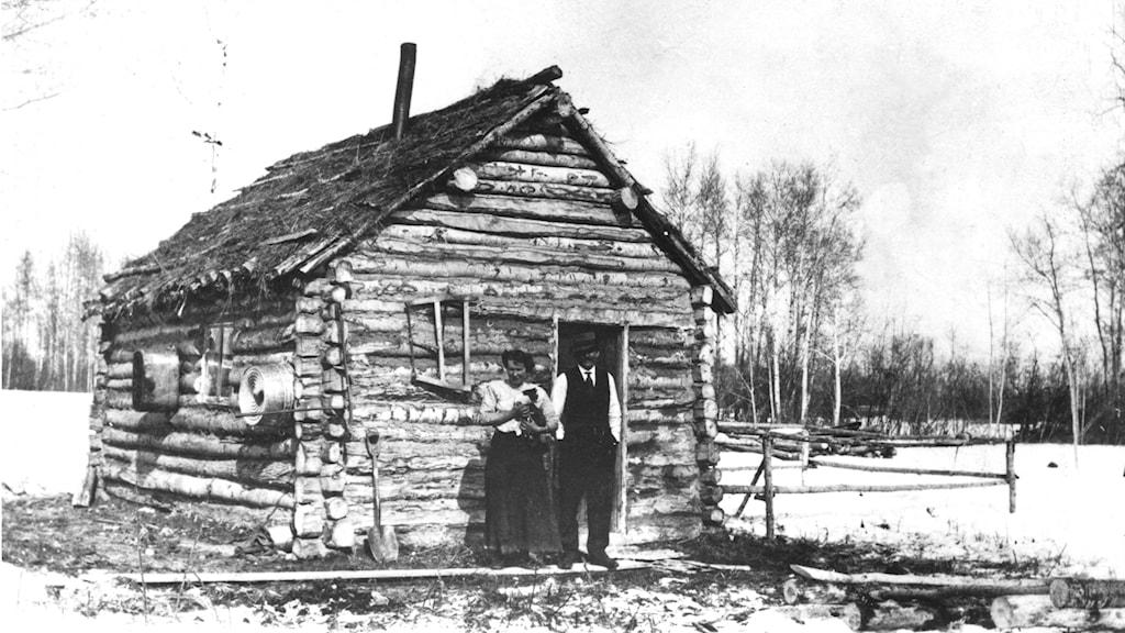Svenska emigranter någonstans i  USA omkring 1920. Från slutet av 1800-talet till tidigt 1920-tal lämnade ungefär  1,3 miljoner svenskar Sverige, de flesta för USA. Foto:  PrB / TT