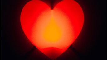 Ett hjärta. Foto Fredrik Persson/Scanpix